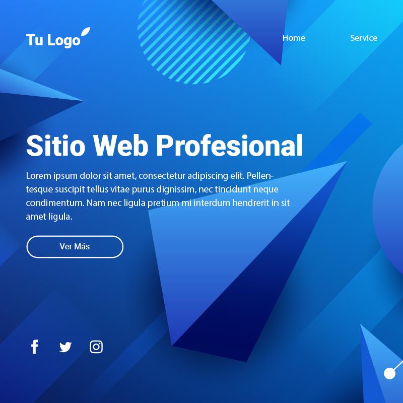dis_web_sitio_profesional-1.jpg